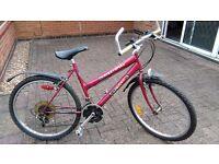 Lady's mountain bike.