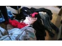 Women's clothes bundle. River island, new look,debenhamss size 12/14