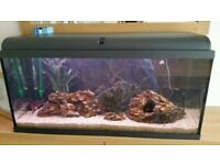 Aquatropic 90 110L aquarium for sale with all accessories - ready for your tropical fish!