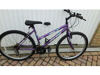 Active Charisma ladies bike £50
