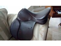 "Saddle Horse GP / Working Hunter - GFS Fieldhouse ""PRO"" Extra - Excellent Condition"