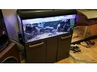 3ft Fish tank and unit and heater