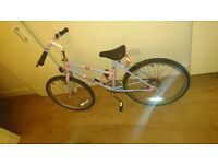 Girls raleigh coco mountain bike