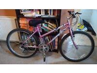"""18"""" Sabre OST Geometry Genie 12-speed ladies mountain bike"""