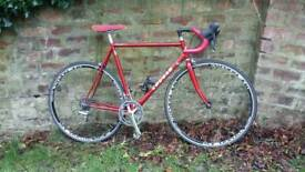 Terry Dolan Cougar. Early 90's Road bike