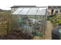 Greenhouse 8'x4'