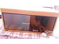 3ft beech wood vivarium with full set up for sale