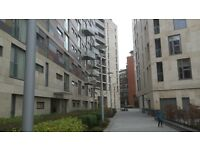 2 bedroom apartment looking for 3 bedroom home