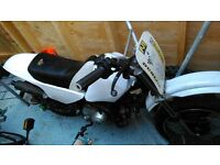 110cc Automatic Pitbike