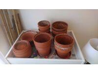 Flowers pots for sale