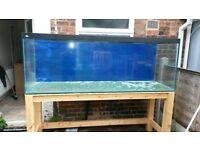fish tank 7 x 2 x 30