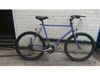 Mens Raleigh Mountain Bike Reynolds 501