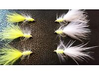 Trout Flies (Free Postage)