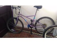 apollo bike with lock and pump