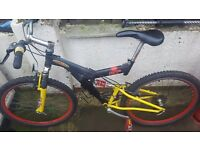 Full Size Adults Mountain Bike with Full Suspension