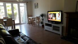 Double Room Ensuit for Rent