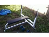 olympic heavy duty bench.