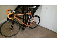 Road Bike. Single speed. Fixie bike