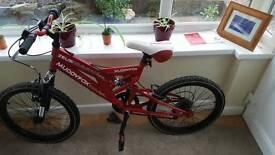 Kids Muddyfox bike