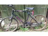 Ladies mountain bike in need of repair.