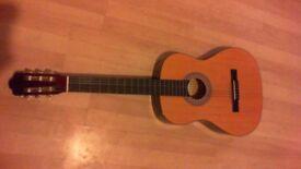 encore beginners guitar