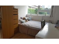 Room in Shoreditch/Sublet 28June-19July