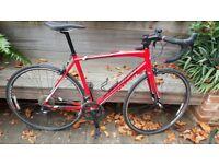 Specialized Allez Road Bike 54cm