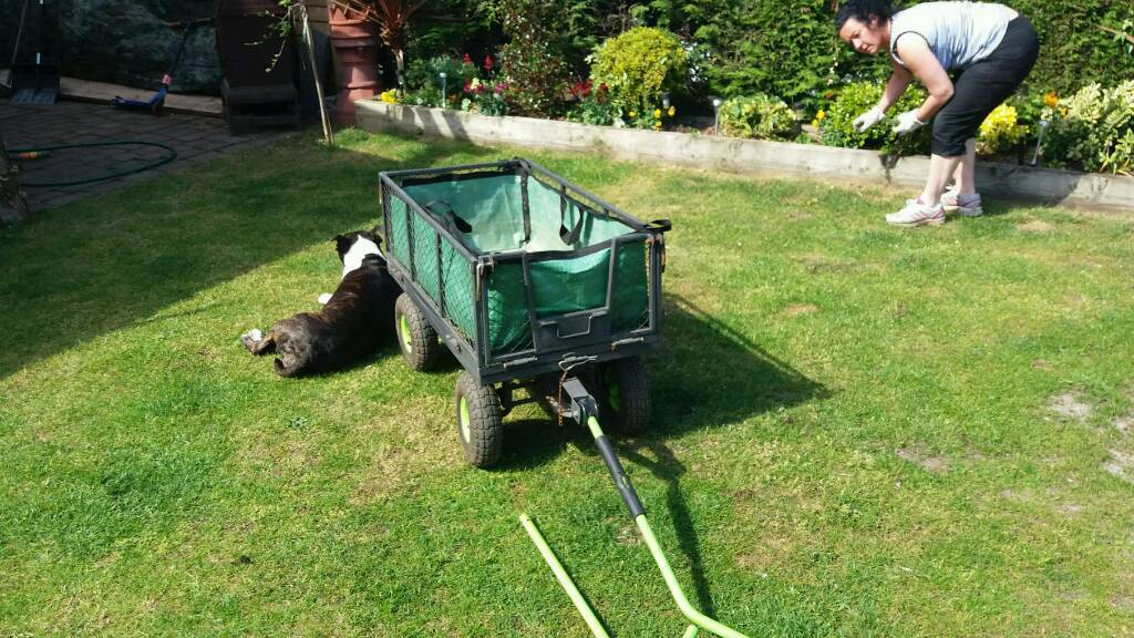 Garden trolleyin Mansfield, NottinghamshireGumtree - Heavy duty garden trolley