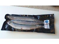 Quality Frozen Sea Fishing Bait