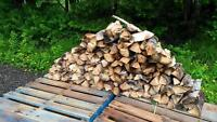 Camping fire wood