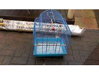 Blue bird. Cage