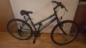 Clean, ready adult bike. 17inch frame