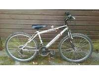 Boys Mountain Bike 16""