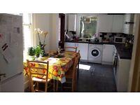 Lovely double room in Balham (single occupier)