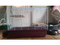 Extra large cage and 2 8 week old budgies please see pics