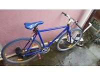 Urban Culture Blue single speed road bike