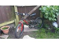 "20"" wheel kids spider bike, excellent condition, can be delivered"
