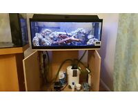 3 foot fish tank and stand