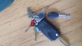 Lost Large bunch of keys