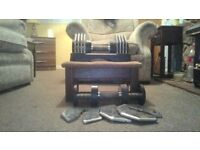 pair of maxxus transformer dumbells