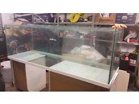 6ft fish tank or Vivarium