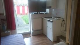 Small Studio for 1. Cosy, clean, quiet with own access leading to garden