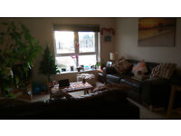 Share a lovely flat and live in a nice double room