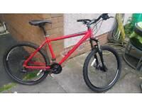 Bicycle carrera size 17