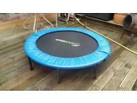 Fitness trampoline 4ft £15