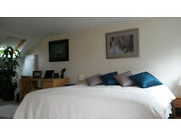 * * SHORT LET November : Top Floor Double Room wth En-Suite for quiet Prof. Single * *