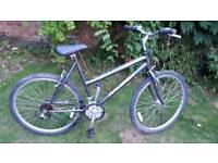 Raleigh fever mountain bike one of many quality bicycles for sale