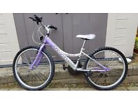"9 - 12 Years / 24"" Wheel ProBike Melody - 24"" Girls Mountain Bike - 2013"