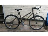 Unisex Luis Mcquinn Mountain Bike with Lock