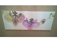 Ikea Orchid spectrum
